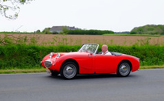 AUSTIN-HEALEY MK3 frog eyes roadster 1959 (claude.lacourarie) Tags: old classic car vintage eyes automobile tour bretagne frog motorbike motorcycle rallye 1959 motos ancien roadster motocicleta austinhealey motocycle vehicule motorrad tdb classique finistere  mk3 2016  abva bromfiets twowheels  deuxroues