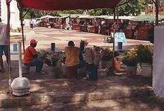 (Implosion VoidListica) Tags: flores calle venezuela sombra margarita analoga