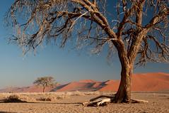 Dunes of Sesriem-Sossusvlei NP | 4