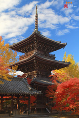 (fravenang) Tags: autumn fall nature japan landscape temple kyoto    soe   wow1 wow2 wow3 wow4 shinnyodo  coth supershot  wow5 anawesomeshot flickraward   canon7d coth5 doubleniceshot