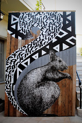 Squirrel (donforty) Tags: squirrel greg don forty simek papagrigoriou