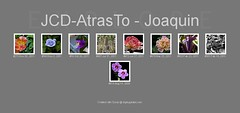 Explore_20111130_JCD-AtrasTo. (Joaquin Atrasto  - @JCDAtrasto) Tags: eos explore canos 2011 50d jcdatrasto
