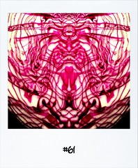"""#Dailypolaroid of 29-11-11 #61 • <a style=""""font-size:0.8em;"""" href=""""http://www.flickr.com/photos/47939785@N05/6445515327/"""" target=""""_blank"""">View on Flickr</a>"""