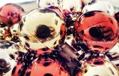 Tiempo de Navidad!!! (Melisa) Tags: santa christmas reflection argentina natal navidad weihnachtszeit reflejo rosario fe nol temps natale tempo tiempo tima adornos navideos oltusfotos bolitasdecoloresparaelpinito