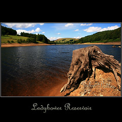 Ladybower Reservoir (JoPoBePo) Tags: uk trees england water britain decay derbyshire peakdistrict hills treetrunk gb land lanscape stumps ladybowerreservoir reservoirs greatphotographers rockpaper flickraward flickraward5 mygearandme mygearandmepremium greaterphotographers