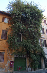 "Borgo Pio • <a style=""font-size:0.8em;"" href=""http://www.flickr.com/photos/89679026@N00/6478180105/"" target=""_blank"">View on Flickr</a>"