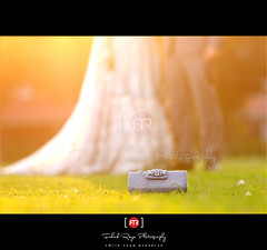 """The bride comes from the heart of dawn, And the bridegroom from the sunset. There is a wedding in the valley. A day too vast for recording."" - Kahlil Gibran (Muhammad Fahad Raza) Tags: wedding pakistan sunset canon golden photographer photoshoot reception hour peshawar bridal goldenhour islamabad goldenwedding valima walima pakistaniwedding islamabadweddingphotographer pakistanweddingphotographer"