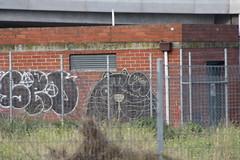 Pirate Cat (Drunk Monkeys) Tags: lush piratecat melbournegraffiti