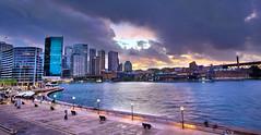 Sydney Circular Quay CBD Panorama