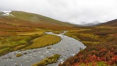 The River Caldew