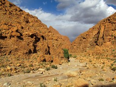 Todra gorge (Linda DV) Tags: africa travel canon geotagged canyon oasis morocco maroc atlas gorge tinghir todra 2011 tinerhir tamazight almarib  lindadevolder  powershotsx30