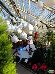 Christmas 2011 SC20111218 129 (fotoproze) Tags: christmas canada natal weihnachten navidad quebec montreal noel nol natale   nadal jl vianoce nollaig karcsony nadolig boi  2011 boenarodzenie vnoce  crciun        kerstmisjoulu boino