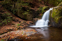 Dodd Creek Falls (John Cothron) Tags: 5dmarkii 5d2 5dii 5dmkii cpl canon canoneos5dmkii chattahoocheeoconeenationalforest cothronphotography distagon352ze doddcreek doddcreekfalls johncothron ravenclifffalls ravenclifffallstrail ravencliffswilderness trails zeissdistagont352ze autumn circularpolarizingfilter clearsky creek crevice environment fall falling fissure flowing forest freshwater granite hiking landscape leaves longexposure morninglight moss nature outdoor outside protected reflection river rock scenic stream sunny water waterfall georgia img06099111022 ©johncothron2011