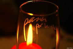 Pasin por la vida... / Passion for life... (Ferny Carreras) Tags: life new cup candle year vida passion cheers vela nochevieja ao copa nuevo brindis pasin brindar oltusfotos feliz2012 happy2012 pasinporlavida