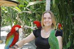 _MG_1886 (James_Roberts) Tags: bali holiday october 2011 tamanburungbalibirdpark