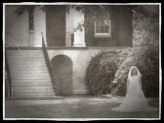 the bride - vintage style (thahawk) Tags: blackandwhite bw building vintage bride steps entrance aged mansion thahawk blinkagain