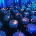 Victoria Ghost Chair - Volkswagen Event - Furniture Hire