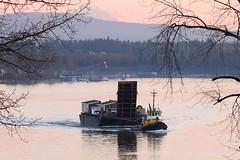 Glen Rover Moving Someone's Camp (rog45) Tags: canada canon bc 7d tugboat tug 18200 barge fraserriver towboat rog45 glenrover