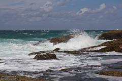 IMG_5935.jpg (Christoph Boddem) Tags: beach walking rocks hiking swb catherinehillbay cavesbeach frazerbeach daywalk redochrebeach sydneybushwalkers timberbeach cathohillbay