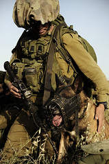 Good Dog (Israel Defense Forces) Tags: dog army israel military canine soldiers israeli idf k9 israeliarmy israeldefenseforces groundforces oketz israelimilitary