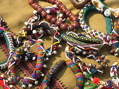 Handicraft (Shreeram Ghaisas) Tags: birds kutch dasada rann littlerann gujarath