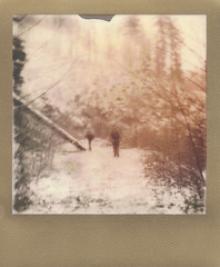 into the forrest (Beaulawrence) Tags: road trees winter white mountain snow canada black cold classic film analog forest vintage silver project square toy polaroid gold one lomo lomography bc shot forestry grain january logging columbia hike retro plastic 600 frame integral mission instant series british cl 2012 impossible 635 deroche