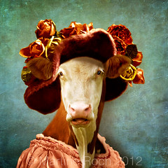 the sulky lady (Martine Roch) Tags: cow vache lady portrait moody sulky character thecharacters lescaractres flypapertextures surreal surrealist animal photomontage love expression costume hat flowers square martineroch