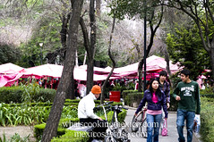 "Walking to the tianguis<br /><span style=""font-size:0.8em;"">Read more about it here:<br /><a href=""http://whatscookingmexico.com/2012/01/30/market-monday-sullivan-tianguis-a-photoset/"" rel=""nofollow"">whatscookingmexico.com/2012/01/30/market-monday-sullivan-...</a></span> • <a style=""font-size:0.8em;"" href=""https://www.flickr.com/photos/7515640@N06/6789290971/"" target=""_blank"">View on Flickr</a>"