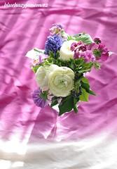 Bouquet #7 ~ Ranunculuses and Violets ~ (bluehazyjunem) Tags: light shadow violet ranunculus bouquet picnik