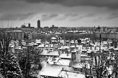 Tombe la neige, tu ne viendras pas ce soir...... (chouca69) Tags: city winter blackandwhite bw snow france monochrome blackwhite lyon noiretblanc hiver nb neige ville noirblanc toits adamo rhnealpes tombelaneige netb