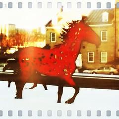 Iron horse (aylmerqc) Tags: camera sculpture horse ontario art metal square rust iron ipod format nationalgalleryofcanada ottawaon muséedesbeauxartsducanada