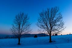IoI (Daniel Kulinski) Tags: morning blue winter sky snow plant cold tree ice sunrise landscape mirror europe frost image wind daniel space creative picture evil samsung poland fresh land imaging 1977 less zakopane refreshed nx poronin nx200 kulinski daniel1977 samsungnx samsungimaging samsungnx200 danielkulinski