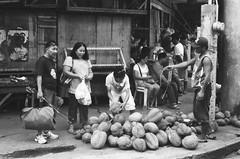 Durian Season (REM (rembcc)) Tags: bw white black film noir philippines super blanca durian blanc ilford yashica negra davao mindanao fx3 sfx200
