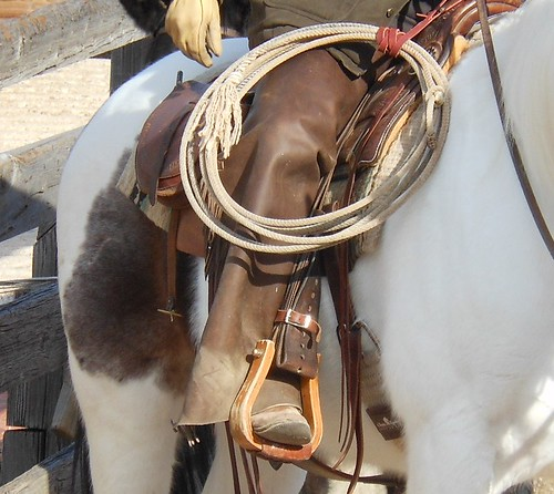 horse tourism rope rider fortworth saddle attraction stirrup stockyards