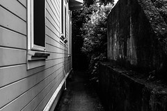 Building Nook (pillarsoflight) Tags: blackandwhite bw monochrome beauty oregon 35mm portland prime aperture nikon adobe pdx desaturated 18 pnw lightroom d3300