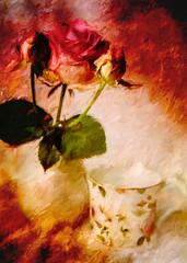 Passion SS (BirgittaSjostedt.) Tags: stilllife flower texture rose still paint ie magicunicornverybest sliderssunday birgittasjostedt