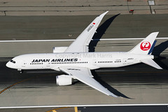 Japan Airlines Boeing 787-8 Dreamliner JA832J (Mark Harris photography) Tags: plane aircraft boeing lax spotting 787 caon