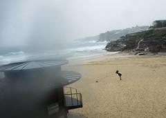 Wild Wind (phillipdumoulin) Tags: winter cold beach bondi rain sand surf wind sydney australia nsw bondibeach easternsydney wintery tamarama southernhemisphere tamaramabeach wildsurf