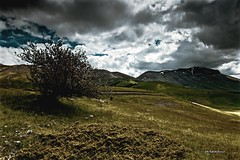 Ampie vedute (BIO_MA Roberto Perucci) Tags: landscape paesaggi montagna castelluccio lucieombre sibillini vettore parconazionale
