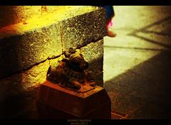 Nandi Statue | Jejuri, Pune