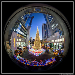 Christmas in Osaka (Ilko Allexandroff (a.k.a. sir_sky)) Tags: kyoto  naniwa osaka christmas japan   tree kobe ilko allexandroff imghp google sky building  light dark emotion mostinteresting most more interesting good awesome    canon hdr   fish eye