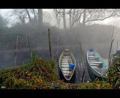 *Boats* (alfvet) Tags: fog boats nikon fiume barche nebbia parcodelticino veterinarifotografi doubleniceshot tripleniceshot mygearandme mygearandmepremium mygearandmebronze mygearandmesilver mygearandmegold mygearandmeplatinum flickrstruereflection1 flickrstruereflection2 flickrstruereflection3 flickrstruereflection4 flickrstruereflection5 flickrstruereflection6 flickrstruereflection7 flickrstruereflectionexcellence