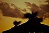 Deck (JavierAndrés) Tags: travel viaje sunset sky clouds contraluz relax atardecer nikon straw cielo nubes silueta paja cabañas sillouhete sombrillas d3100
