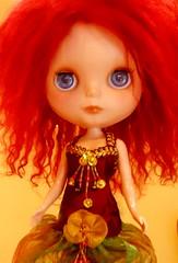 Lola   140/365   Bl♥ved