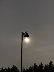 farola (jimmy297.) Tags: light sun luz sol arbol gris jimmy javier logroño solano tarde jimenez olétusfotos javierjimenezsolano