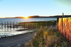 Atardecer en Caleta PichiPelluco - Puerto Montt (Noelegroj (More than 6 Million views.Thank you all) Tags: chile travel viaje sunset patagonia costa landscape atardecer cove lakedistrict paisaje shore pichipelluco puertomontt caleta seascap regiondeloslagos