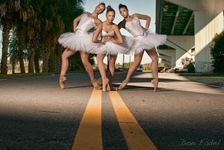 Roadkill Ballerinas I