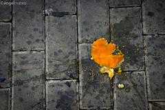 ESTADO DEL BIENESTAR (ngel mateo) Tags: street espaa orange calle andaluca spain cobblestone aplastado naranja almera crushed adoquines berja ngelmartnmateo ngelmateo