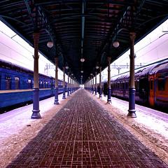 On platform. Moscow-Torino (Gena Golovskoy) Tags: station train russia moscow platform gena vokzal belorusskiy ggolovskoy golovskoy moscowtorino