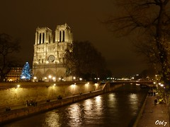 Majestic Notre-Dame (Otd 7 // Photography) Tags: christmas winter paris tree natal seine night de navidad noche cathedral nacht hiver catedral cathdrale di rbol noite invierno nol notre dame albero inverno natale nuit rvore notte sapin tannenbaum kathedral cattedral